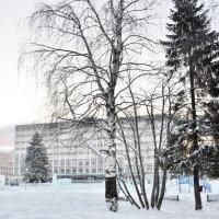 Елка на площади :: Viktor Pjankov