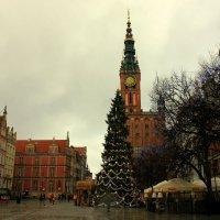 Новогодняя елка :: Ольга