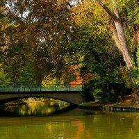 Октябрь в парке :: Alexander Andronik