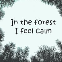 In the forest I feel calm :: Franky Fraker