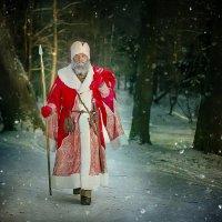 Мороз - Воевода шагает по стране! :: Виктор Седов