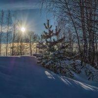 Мороз и Солнце 2 :: Андрей Дворников