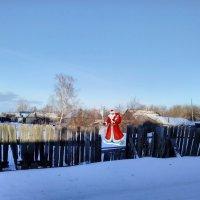 Щас поздравит с Новым Годом. :: Евгений Алябьев
