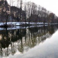 Прозрачность зимних отражений. :: Ольга Голубева