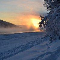 Морозный туман :: Ольга