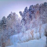Ноябрь 2016. Начало зимы. :: Лариса Димитрова