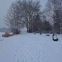 Снег идет, снег идет... :: Galina Dzubina