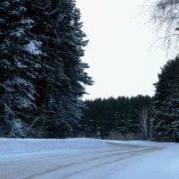 Нижняя дорога на Кемерово :: Наталья Петровна Власова