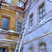 наморозило... :: Наталья Сазонова