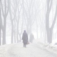 Туман :: Сергей Данилов