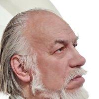 Стариков Леонид :: Валерий Талашов