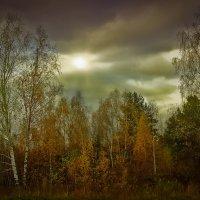 Дыхание осени. :: Алла Кочергина