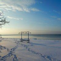 Снежный пляж :: Рина Воржева