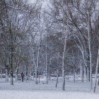 Осенние капризы :: Игорь Сикорский