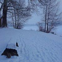 Падает снег ... :: Galina Dzubina