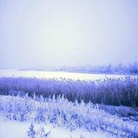 Река подо льдом :: mAri