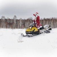 Дедушка мороз :: Ольга Широковская