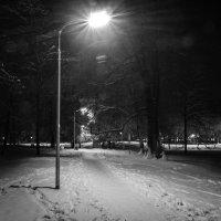 ночь в парке :: Евгений Лебедь