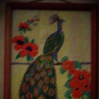 Жар-птица (вышивка крестиком, вышивальщица Людмила Крут-жительница Санкт-Петербурга). :: Светлана Калмыкова