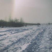 холодно :: Анатолий Калмыков