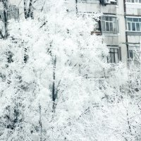 Snowy town :: Алексей Гончаров