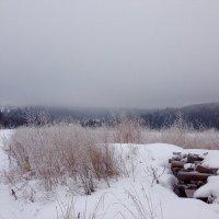 Зима :: Liudmila Antonova
