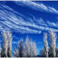 смотрящие на облака :: павел бритшев