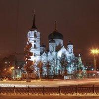 Благовещенский храм в Воронеже :: Лариса