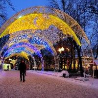 Под сенью Нового года :: Александр