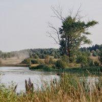 У деревенского пруда :: Luis-Ogonek *
