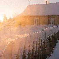 Морозное утро :: Денис Шевчук