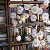 Одуванчики отмечают Старый Новый год в библиотеке... :: Алекс Аро Аро