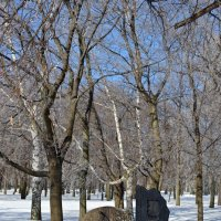 Памятник героям Цусимского сражения :: Ольга