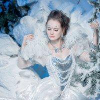 Снежная Королева :: Анита Гавриш