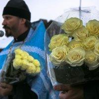 Белые розы :: Вадим Лапин