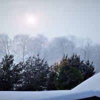 Зимнее солнце 2 :: Валерий Талашов