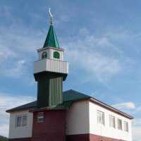 Новая мечеть :: Вера Щукина