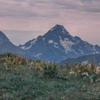 гора Пшиш (3790 м) :: Леонид Сергиенко