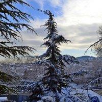 Зимний пейзаж :: Виктор Шандыбин