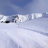 Следы на снегу. :: Anna Gornostayeva