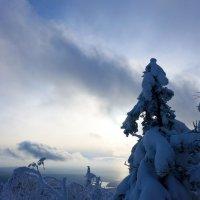 Закатное солнце :: Светлана Игнатьева