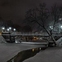Пешеходный мостик Тимма, Рига :: Егор Егоров