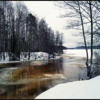 Зимний пейзаж. :: сергей лебедев