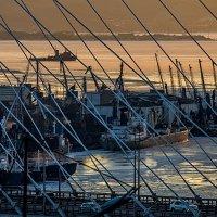 Владивосток,бухта Золотой Рог,холодный январь :: Олег Семенов