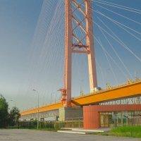 Сургутский мост :: Андрей Кузнецов