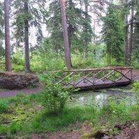 Небольшой искусственный пруд в форме боба и мостиком над ним :: Елена Павлова (Смолова)