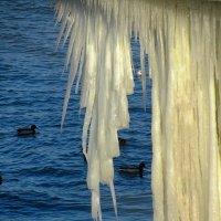 Зима :: Сергей Карачин