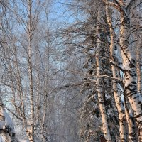Прогулка по райцентру в - 42 :: Леонид Чащин