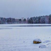 Зима на озере :: Евгения К