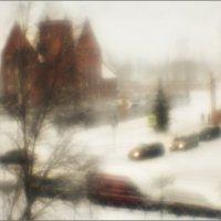 Снежок :: galina bronnikova
